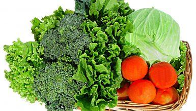 Dieta South dla otyłych